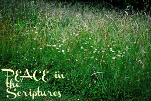 Peace in the Scriptures