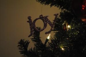 ElysJoy Christmas Celebration 2012