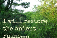 I will restore the anient ruins